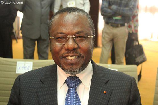 IMG1648 555x370 - Des experts de la région Afrique de l'OMS planchent sur les MNT à Lomé
