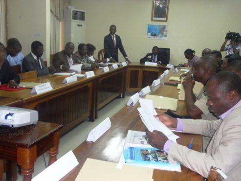 MNT pla stratégique 493x370 - Plan stratégique de lutte contre les MNT 2016-2020: le Togo mobilise les partenaires techniques et financiers