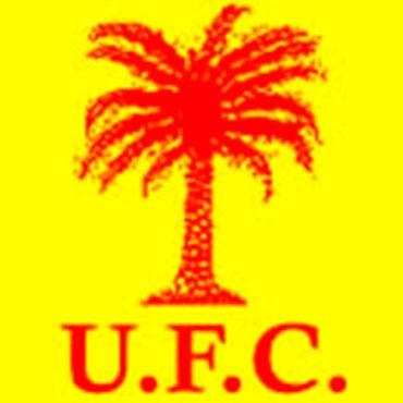 """Ufctogo bon 370x370 - Événements de Mango: l'UFC se dit """"attristée"""" et """" vivement préoccupée!"""