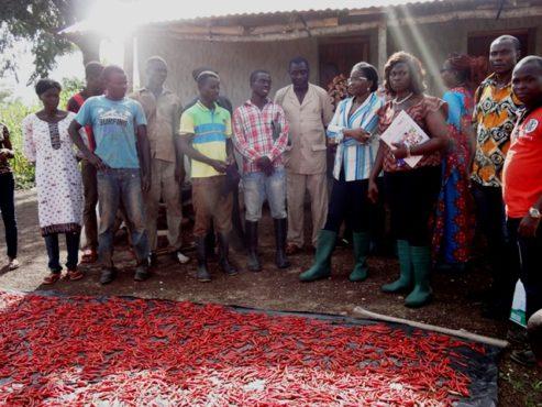 Tourné nord 493x370 - Tournée de Mme Victoire Tomégah-Dogbé dans la Centrale, Kara et Savanes : Les communautés du nord-Togo se prennent en charge grâce à l'appui du gouvernement