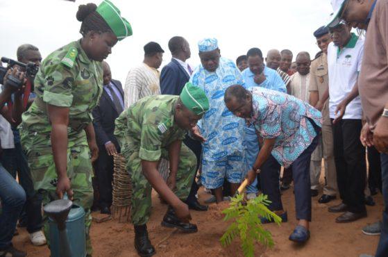 Journée arbre 559x370 - 40è Journée nationale de l'arbre : 50.000 ha reboisés depuis 1977