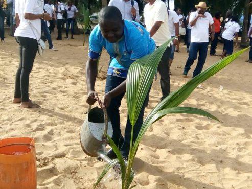 """IMG 20180423 WA0046 493x370 - A l'initiative du Rotary Club"""" Lomé Perle"""": les Rotariens ont planté des cocotiers à la plage de Lomé"""