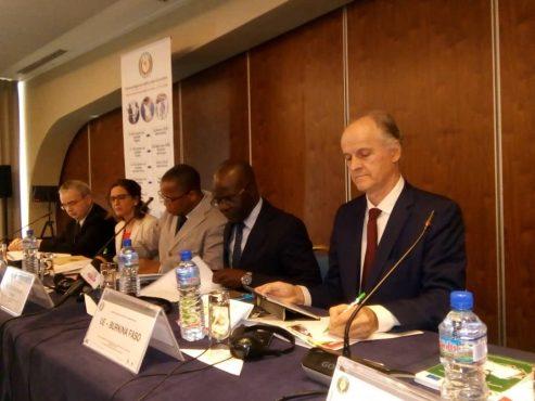 IMG 20190304 WA0011 493x370 - Le comité de pilotage du Projet d'Appui au Stockage de Sécurité Alimentaire en Afrique de l'Ouest tient sa 4ème réunion à Lomé