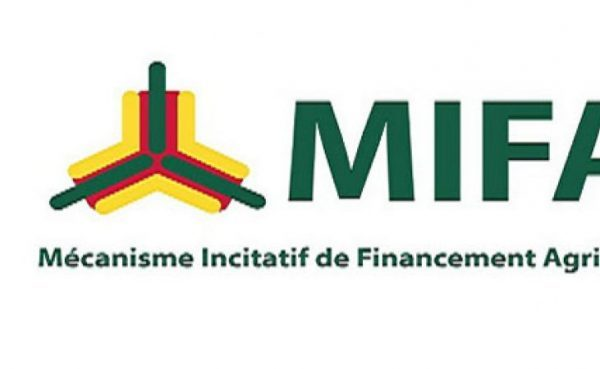 Mifa meilleur 600x369 - Togo/ Entrée de PIA et ARISE au capital du MIFA S.A : accompagner la stratégie de développement agro industriel