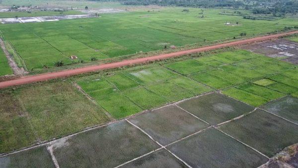 IMG 20200108 WA0080 600x338 - Agriculture / Projet d'Aménagement et de Réhabilitation des Terres Agricoles dans la zone de Mission Tové (PARTAM): ce qu'il faut en savoir