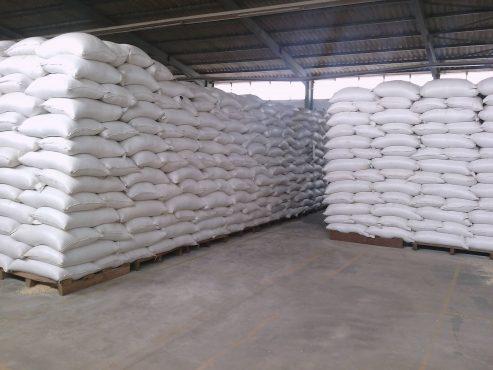 ANSAT 2 493x370 - Sécurité alimentaire: l'ANSAT met sur le marché son stock de produits céréaliers