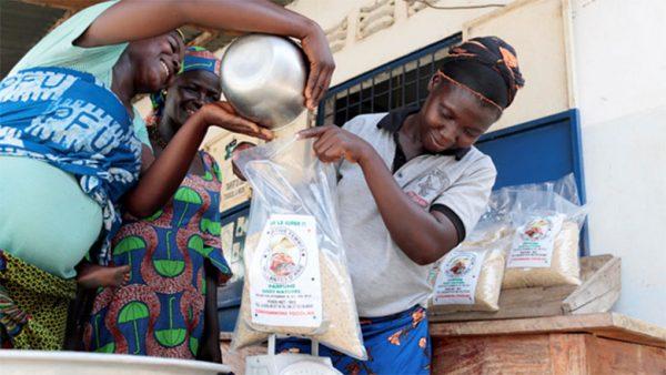 in togo a women farmers cooperative successfully produces premium quality rice 780x439 1 600x338 - Le Togo mise sur la qualité de son riz