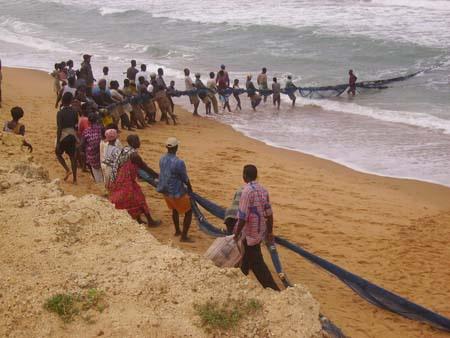 Pêche plage - Les techniques de pêche en mer au Togo: la pêche au filet maillant et la pêche à la senne de plage