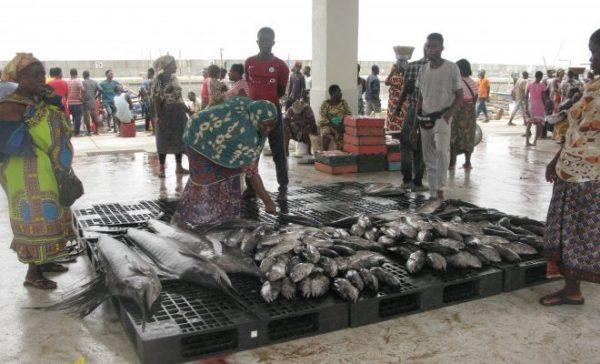 Transaction poisson 600x364 - Port de Pêche : les transactions autour du poisson