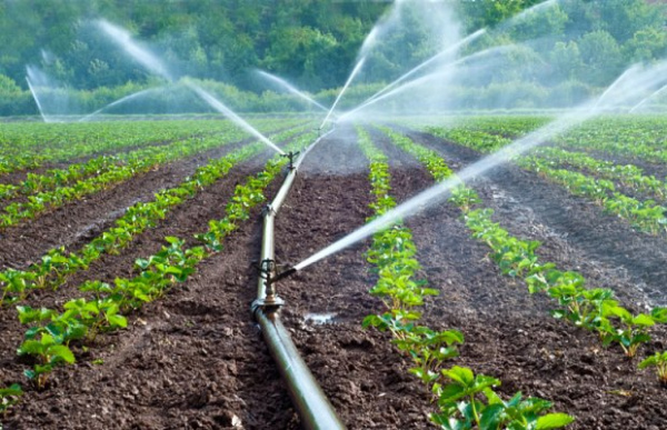 kits dirrigation - Agriculture: le gouvernement mise sur la production contre-saison