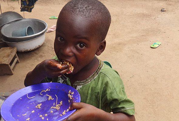 Faim et malnutrition 590x400 - Togo/ Un plan stratégique intersectoriel pour éliminer la faim et la malnutrition