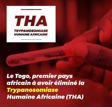 Trypanosomiase 388x370 - Togo, premier pays africain à dire adieu à la maladie du sommeil