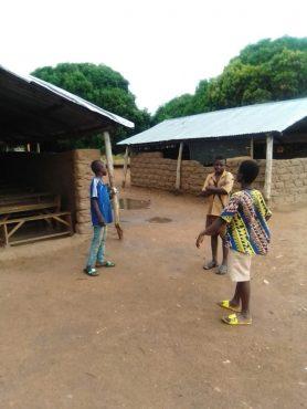 Gominade 278x370 - Togo: à Tchamba, la communauté Gominadè profite des bienfaits du cantonnage
