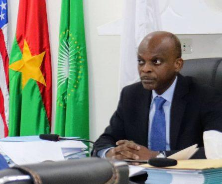 IMG 20210610 WA0099 446x370 - Togo: une réunion virtuelle pour jeter les bases du Haut comité en charge de la décennie des racines africaines et de la diaspora africaine