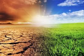 index - Togo/ Forum sur le climat à Lomé : voici la déclaration finale